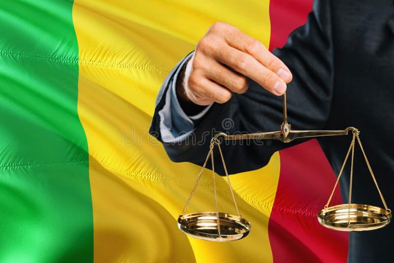O juiz maliense está guardando escalas douradas de justiça com fundo de ondulação da bandeira de Mali Tema da igualdade e conceit fotos de stock royalty free
