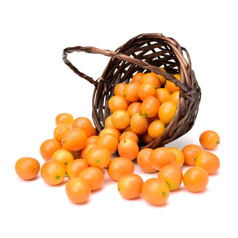 O Kumquat, o fruto tem uma pele exterior doce e uma carne interna da galdéria foto de stock
