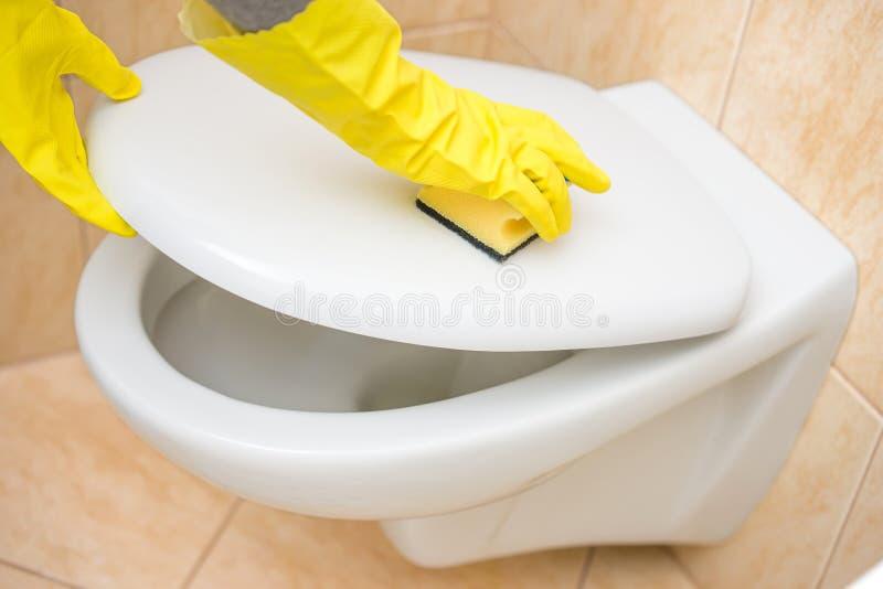 O líquido de limpeza fêmea profissional está limpando o toalete no banheiro imagem de stock