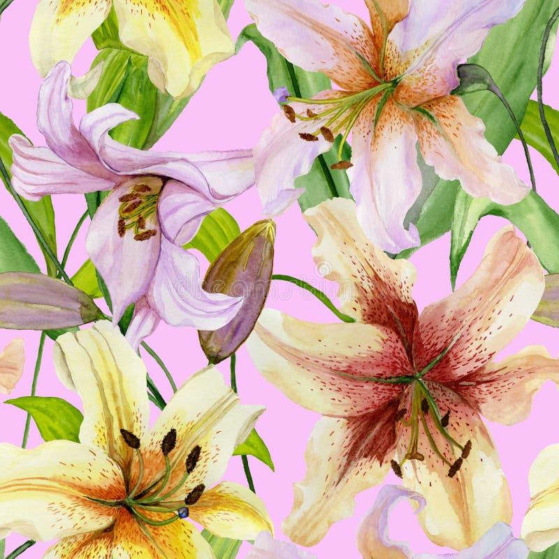 O lírio bonito floresce com as folhas verdes no fundo cor-de-rosa Teste padrão floral sem emenda Pintura da aguarela ilustração royalty free