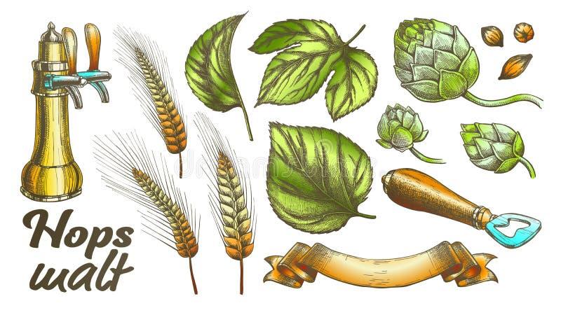 O lúpulo da cor sae do vetor do grupo do abridor da orelha de Rye do trigo da cevada ilustração stock