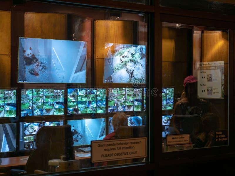 O laboratório de pesquisa do comportamento da panda gigante monitora pandas no jardim zoológico do nacional do ` s de Smithsonian imagens de stock royalty free