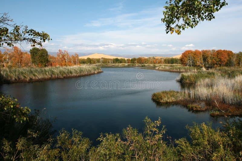 O lago branco da areia imagem de stock royalty free