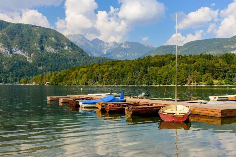 O lago cênico Bohinj fotos de stock