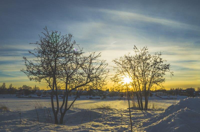 O lago congelado da tampa de neve obteve a luz do sol dourada amarela do tempo com o horizonte fotografia de stock royalty free