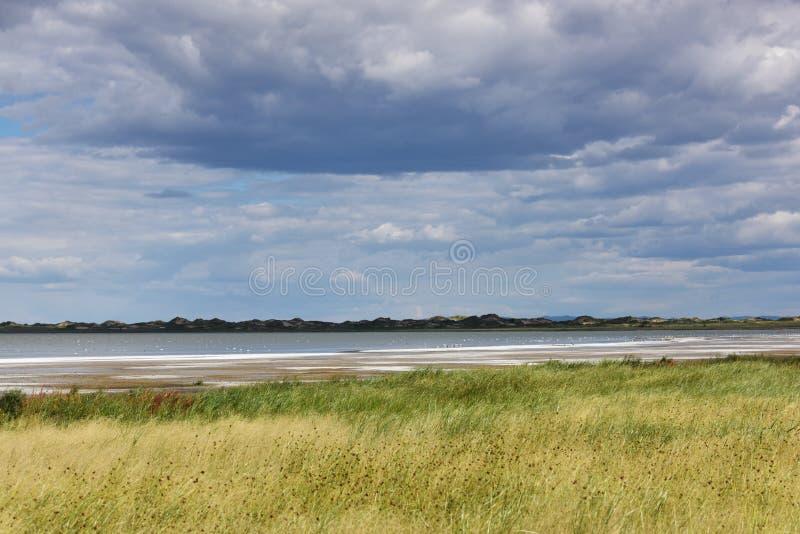 O lago de sal no Gobi fotos de stock royalty free