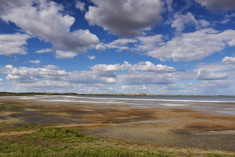 O lago de sal no Gobi fotos de stock