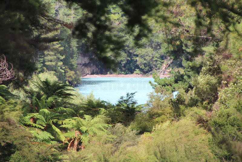 O lago escondido imagem de stock