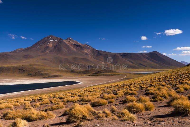 O lago Laguna Miscanti Miscanti com as montanhas e o vulcão circunvizinhos no deserto de Atacama, o Chile fotos de stock royalty free