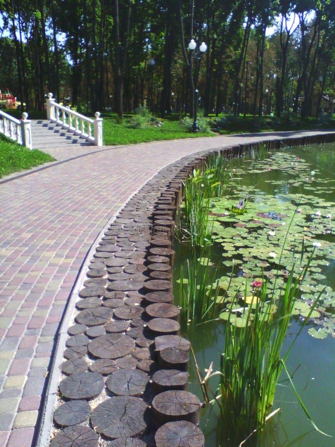 O lago no parque fotos de stock