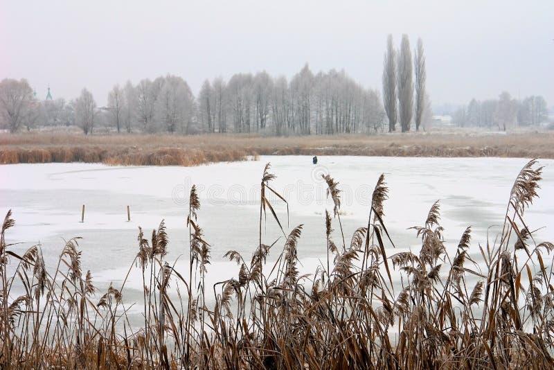 O lago preso no gelo imagem de stock