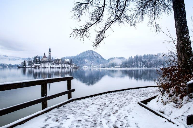 O lago sangrou no inverno, sangrado, Eslovênia, Europa foto de stock royalty free