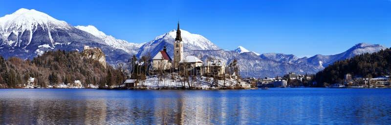 O lago sangrou no inverno, sangrado, Eslovênia, Europa fotos de stock
