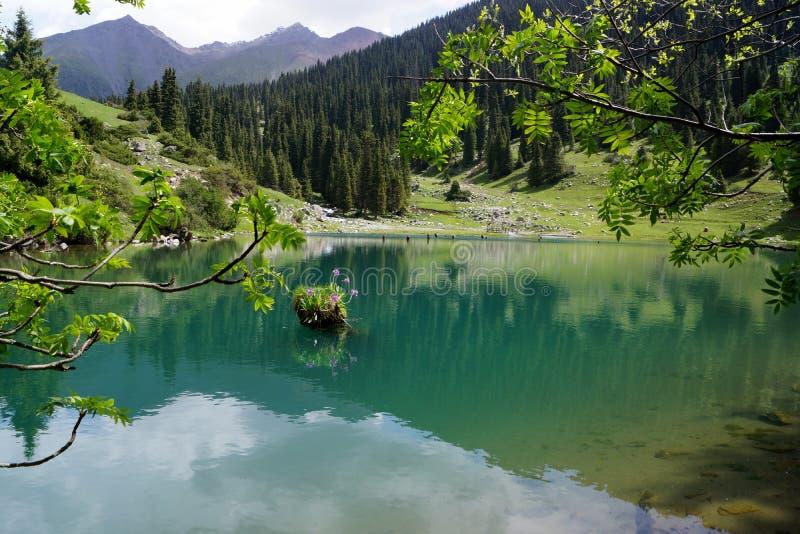 O lago turquoise fotos de stock