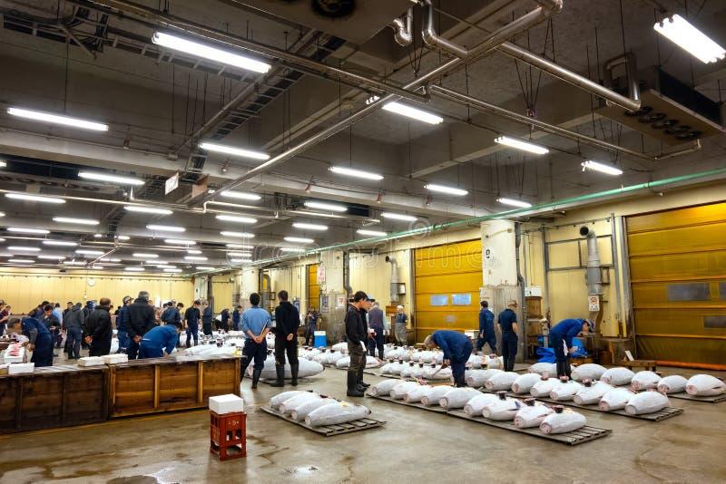 O leilão do atum no mercado de Tsukiji no Tóquio, japão foto de stock
