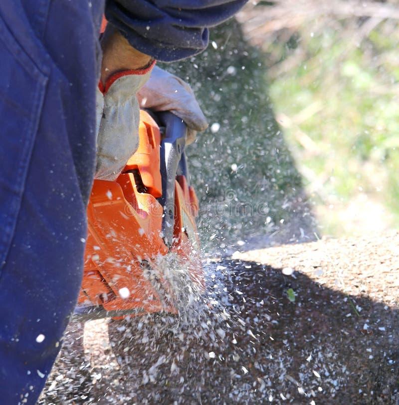 o lenhador corta o tronco com a serra de cadeia imagem de stock
