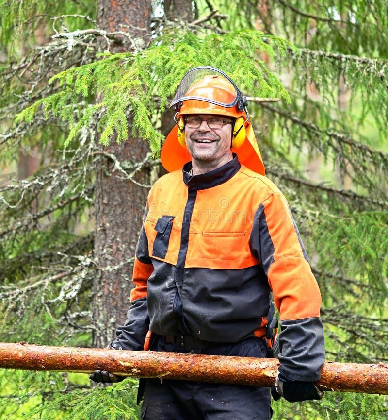 O lenhador Worker leva, arrastando o log dos ganchos especiais fotos de stock royalty free