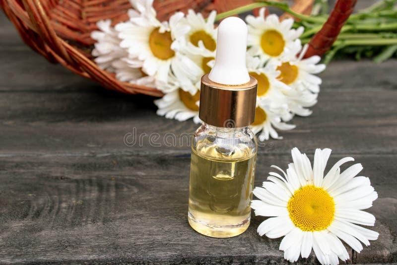 O ?leo essencial da camomila em uma garrafa de vidro est? em placas de madeira perto da cesta com flores da camomila fotos de stock