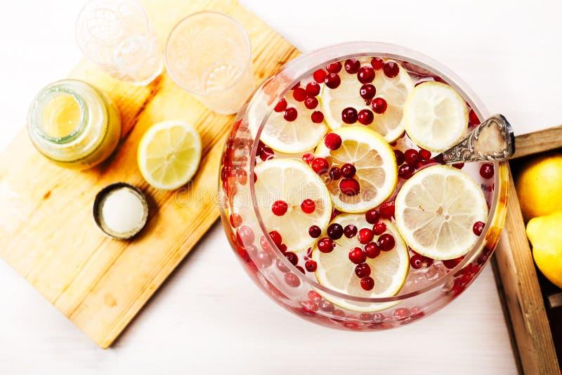 O limão do arando congelou a água da desintoxicação foto de stock royalty free