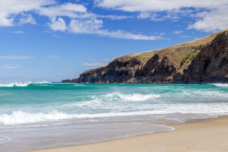 O litoral na baía do Sandfly fotos de stock