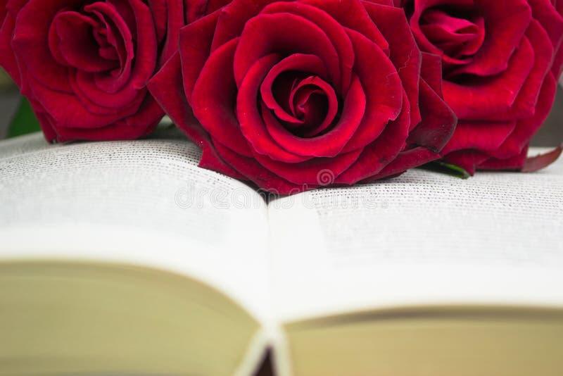 O livro aberto e as rosas vermelhas fotos de stock royalty free