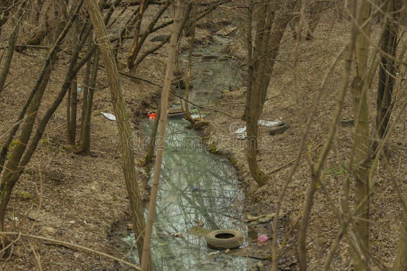 O lixo do rio do córrego da floresta da mola desperdiça garrafas de vidro plásticas do pneu Problemas da ecologia, poluição do pl imagens de stock royalty free