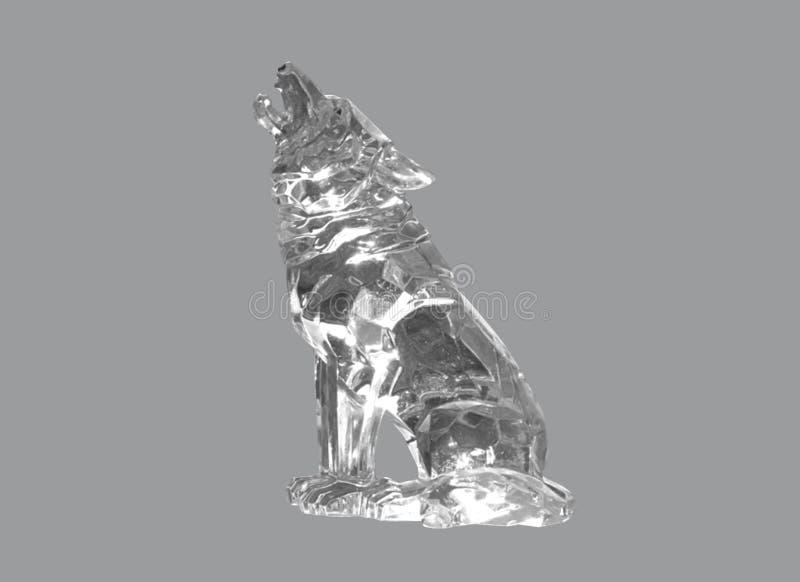 O lobo do vidro foto de stock royalty free