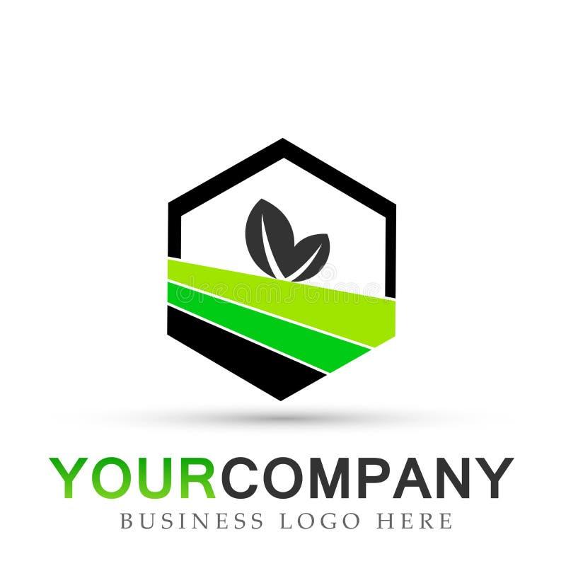 O logotipo da folha da planta no hexágono dado forma no vetor verde do ícone do símbolo projeta no fundo branco ilustração royalty free