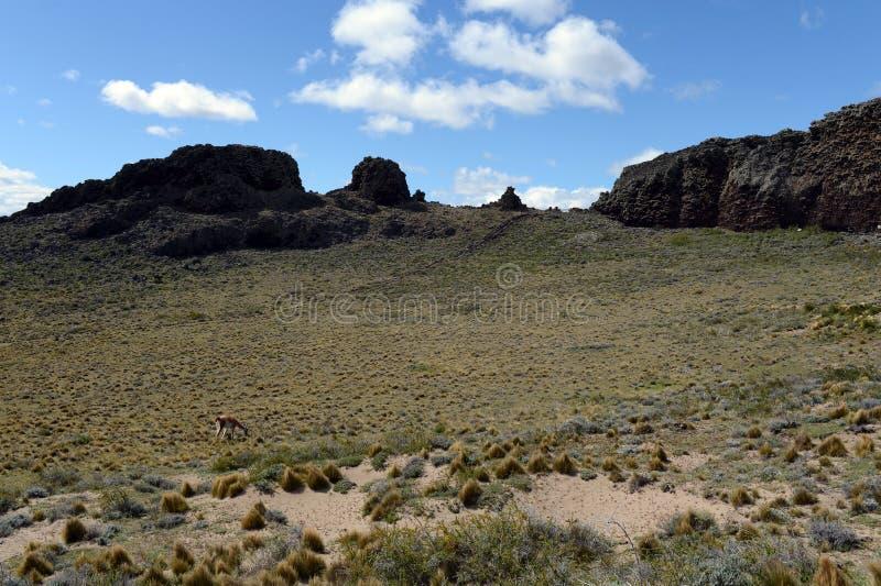 O lugar habitado por tribos indianos antigos no parque nacional Pali Aike foto de stock
