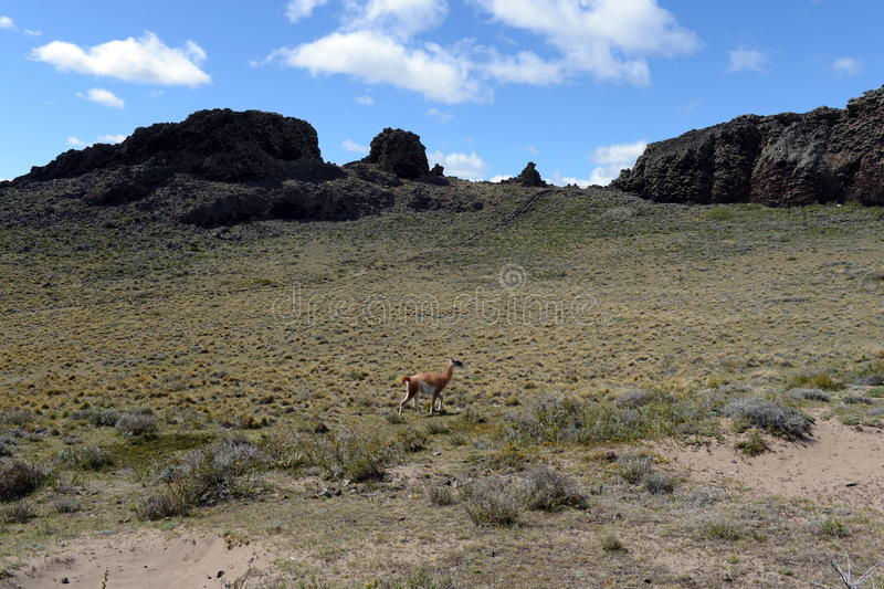 O lugar habitado por tribos indianos antigos no parque nacional Pali Aike fotos de stock royalty free