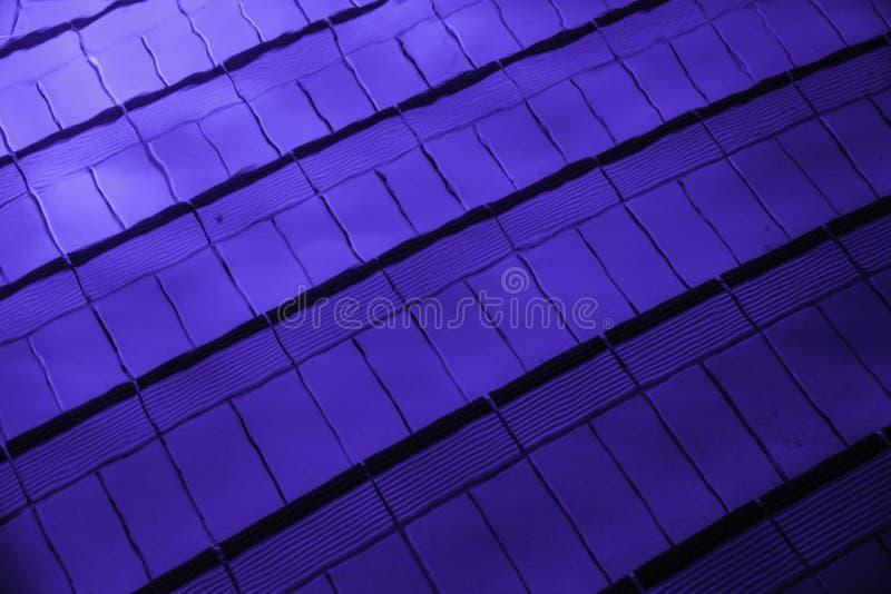 O luminoso na piscina fotografia de stock royalty free