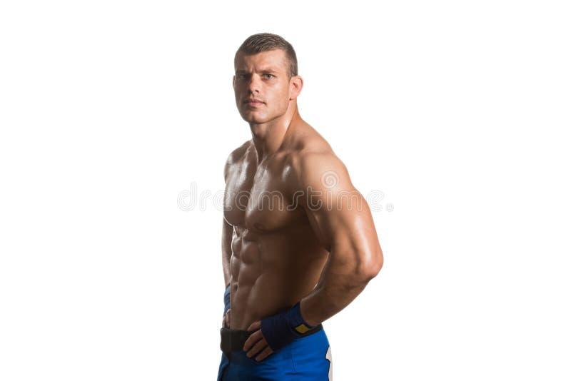 O lutador - isolado no fundo branco imagem de stock