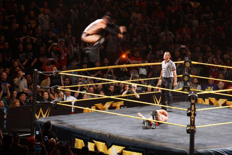 O lutador masculino Finn Balor de NXT faz Golpe de Grâce (dobro de mergulho imagem de stock