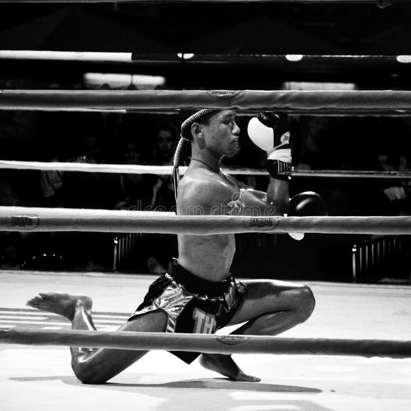 O lutador não identificado executa primeiramente o respeito (Wai Khru Ram Muay) antes de fighing imagem de stock royalty free