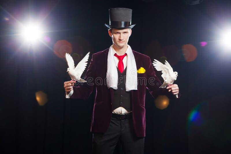 O mágico com duas pombas brancas de voo Em um fundo preto imagens de stock royalty free