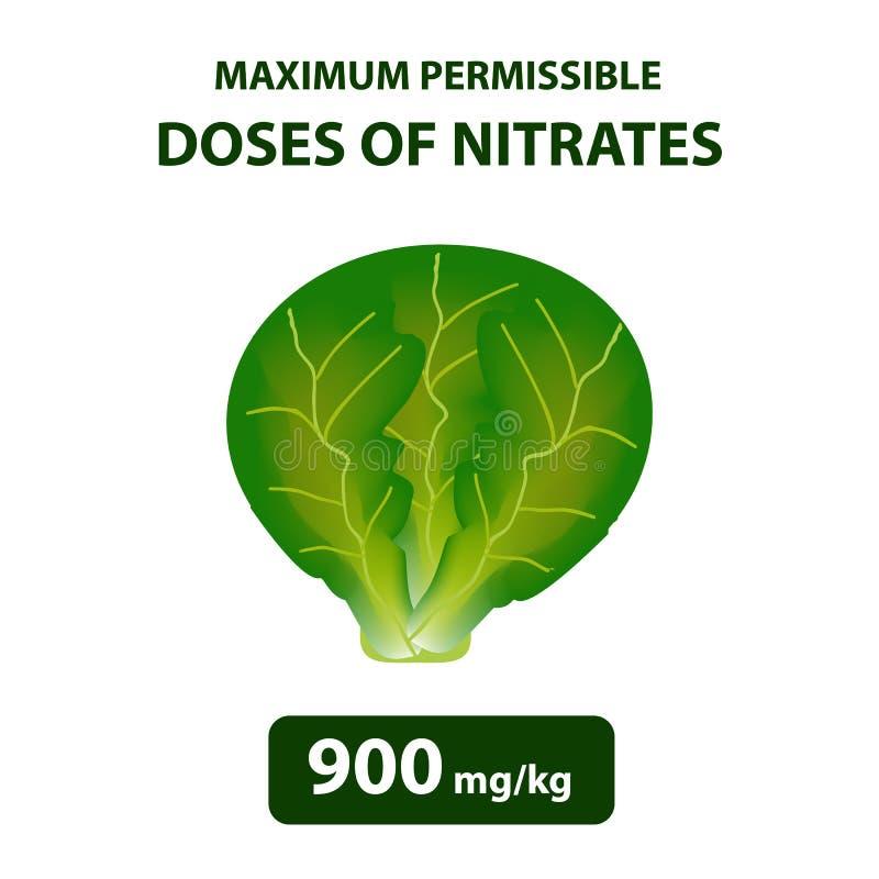 O máximo - dose permissível dos nitratos na couve Nitratos nos vegetais e nos frutos Infographics Ilustração do vetor ilustração do vetor