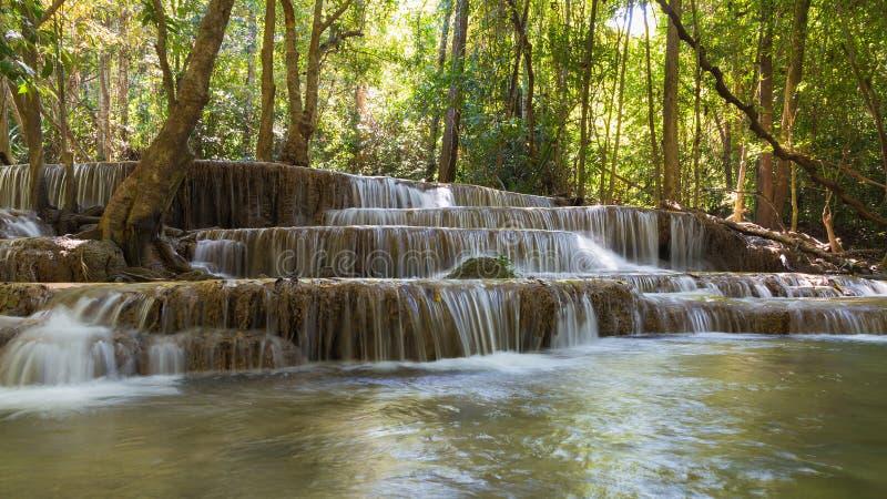 O múltiplo profundo da floresta mergulha cachoeiras fotografia de stock royalty free