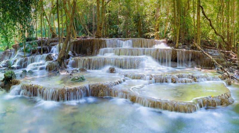 O múltiplo profundo da floresta mergulha cachoeiras naturais imagem de stock royalty free