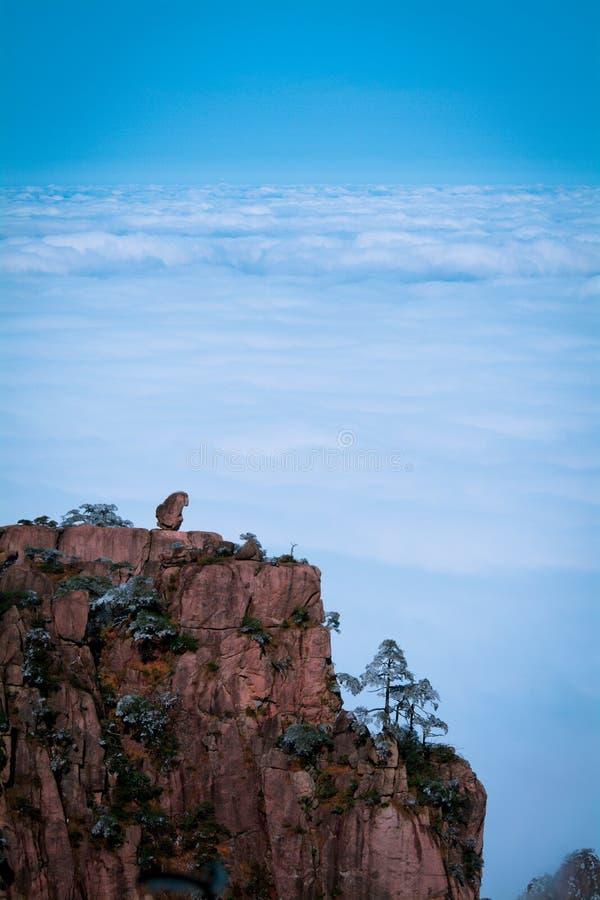 O macaco vê nuvens após a neve na montagem Huang imagem de stock