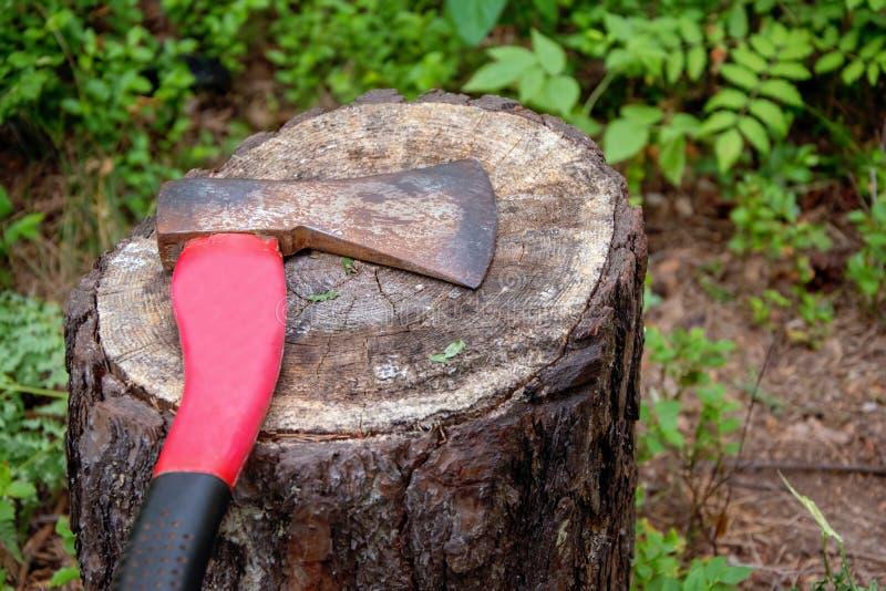 O machado velho encontra-se no coto de uma árvore abatida, o problema da ecologia fotografia de stock royalty free