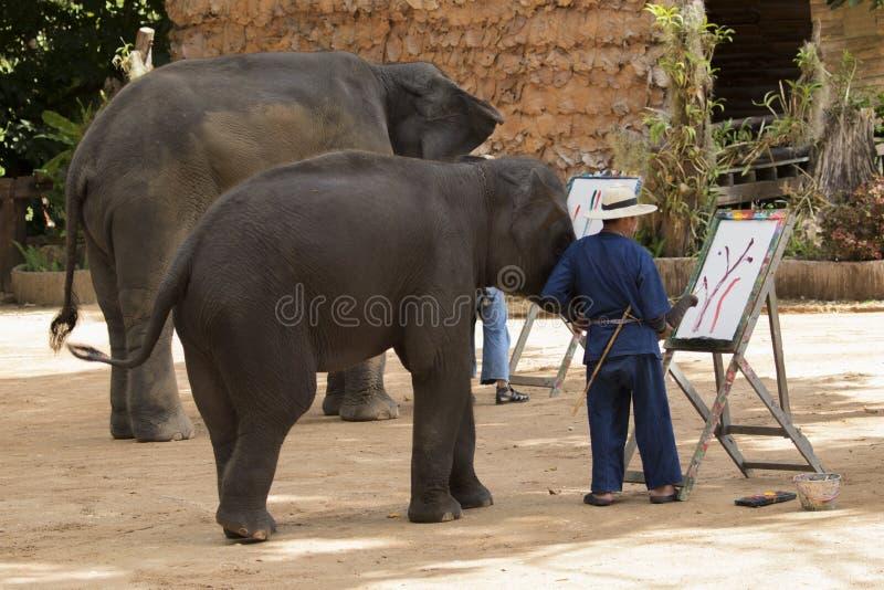 O Mahout treina o elefante selvagem para pintar a imagem para o turismo imagens de stock