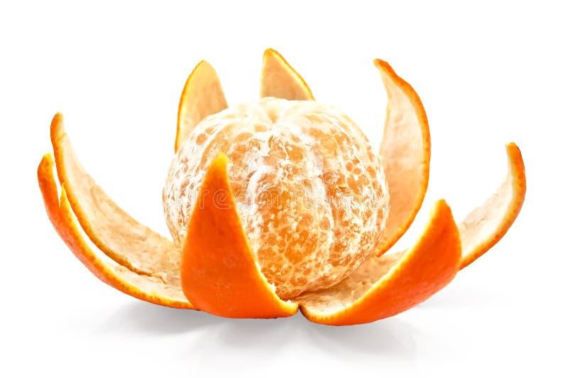 O mandarino na casca pelo purified imagens de stock royalty free