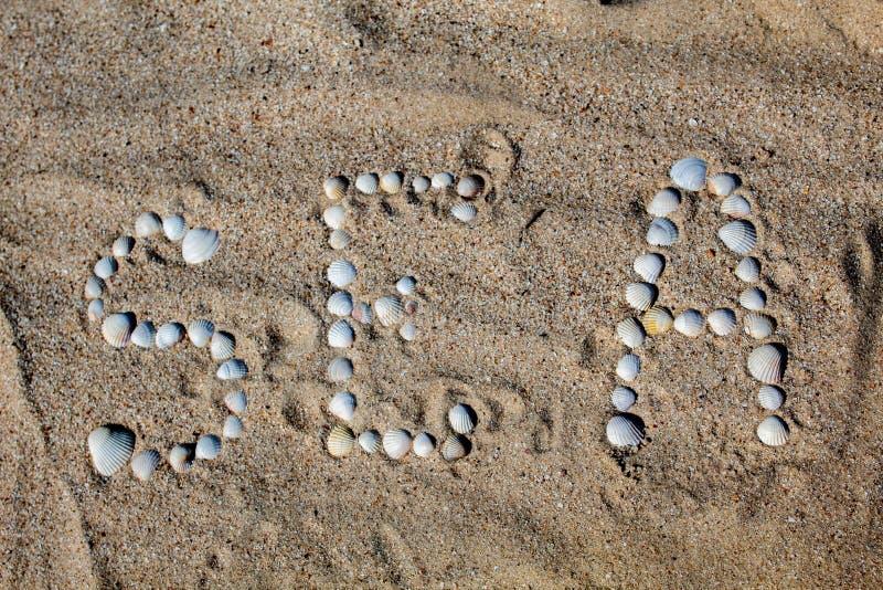 O mar da palavra no inglês, apresentado na areia com escudos fotos de stock royalty free