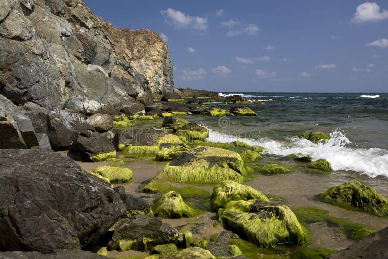 O Mar Negro fotos de stock royalty free