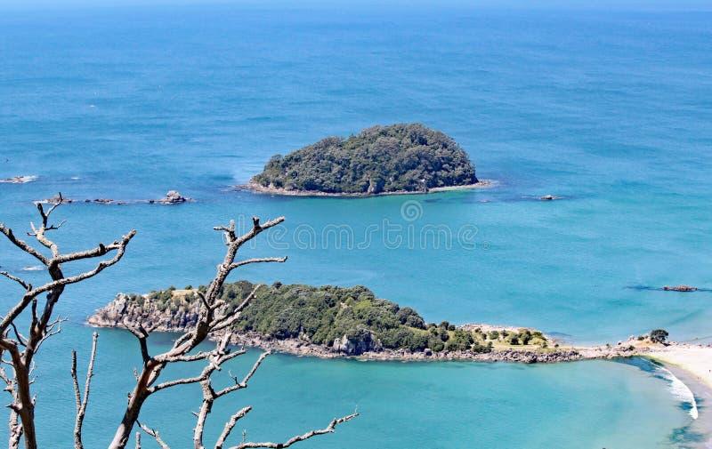 O mar que cerca a montagem Maunganui na ilha norte, Nova Zelândia de turquesa imagem de stock