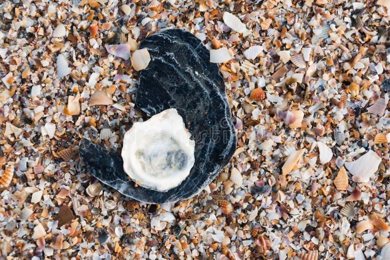 O mar quebrado colorido descasca o fundo fotos de stock