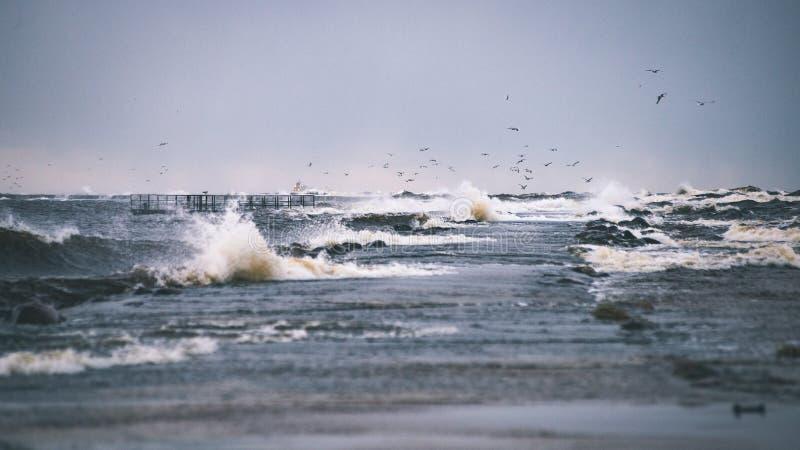 O mar tormentoso no inverno com branco acena o esmagamento - lo do filme do vintage imagem de stock