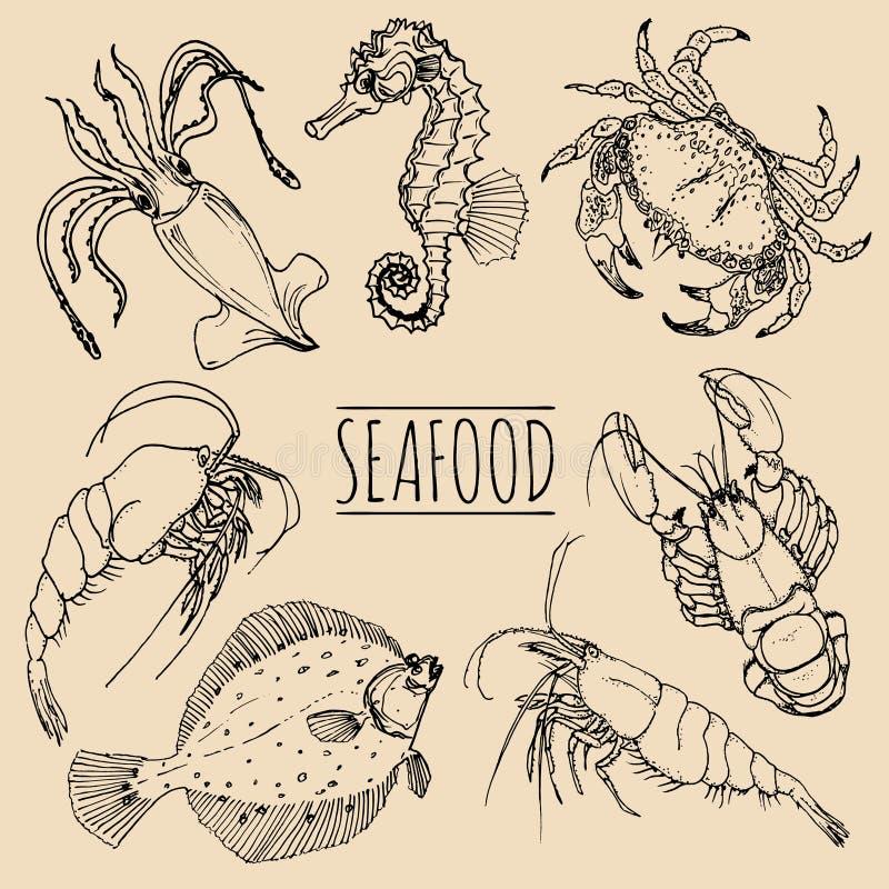 O marisco do vintage do vetor esboça a coleção Entregue ilustrações tiradas dos peixes para o restaurante, menu do café, anúncio  ilustração royalty free