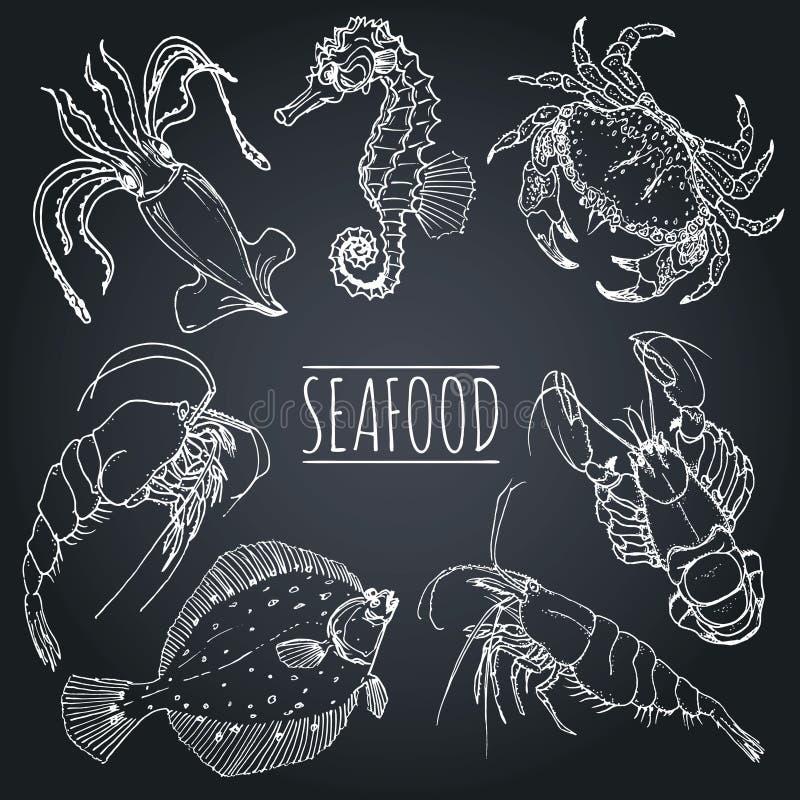 O marisco do vintage do vetor esboça a coleção Entregue ilustrações tiradas dos peixes para o restaurante, menu do café, anúncio  ilustração do vetor