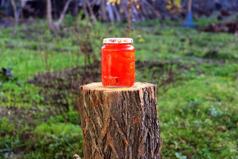 O marmelo do doce preserva o frasco da tampa fotografia de stock